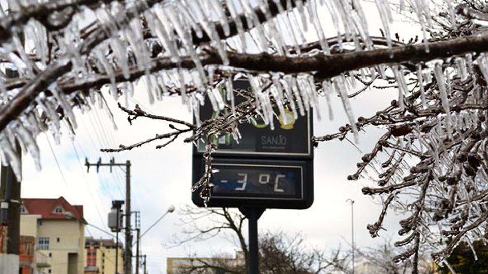Frio, vinhos e maçãs: São Joaquim é um destino imperdível para quem gosta de baixas temperaturas