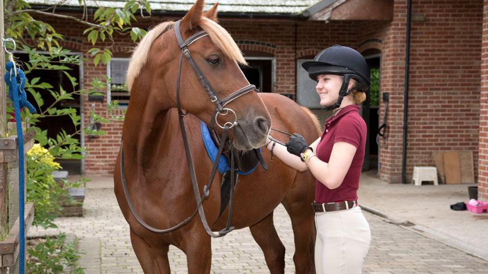 Dica de esporte: Hipismo proporciona muito contato com os animais e diversão para todas as idades